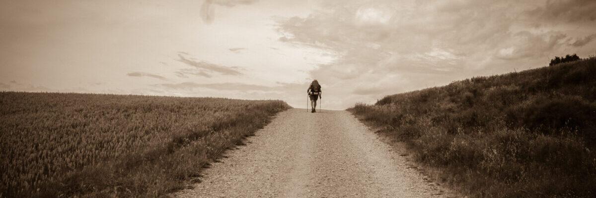 Cammino e Meditazione